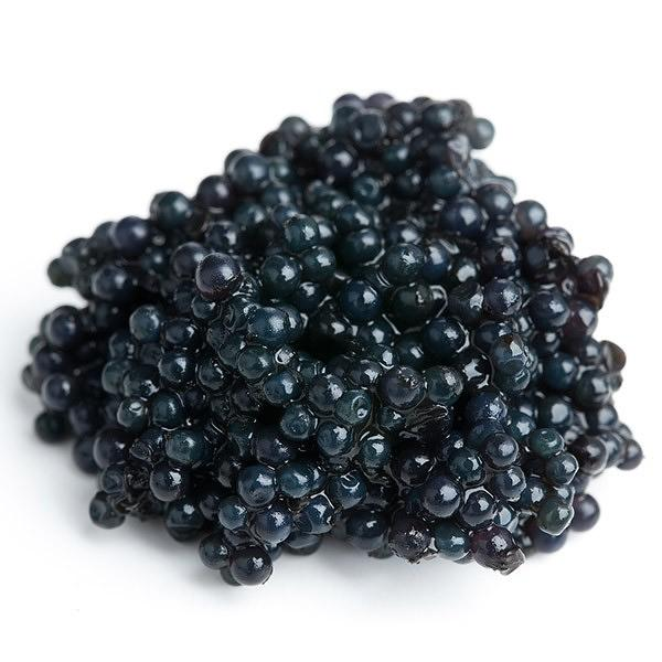 Sturgeon Paddle Fish Black Caviar Pasteurized, 1.1 lb / 0.5 kg